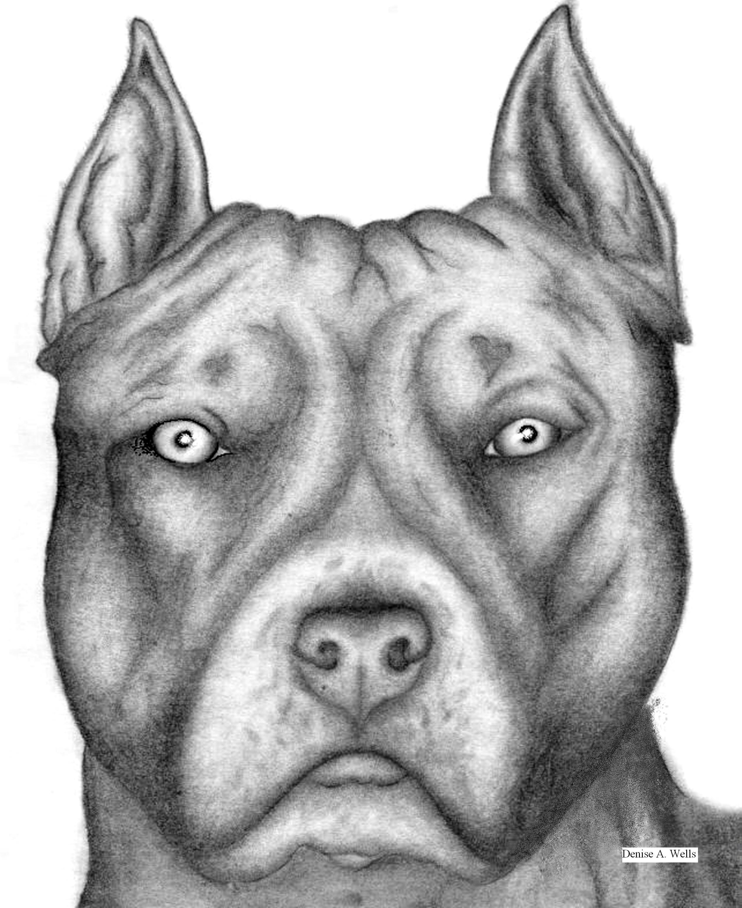 pitbulls are good dogs essay