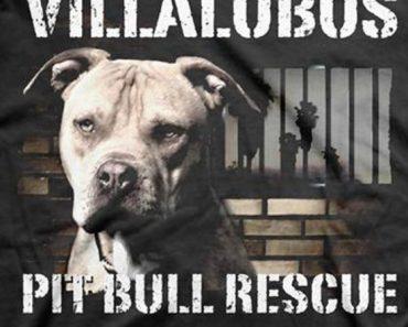 villalobos pit bulls and parolees