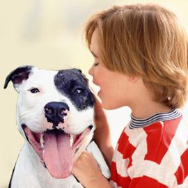 Dog Bite Prevention for Children | Good Pit Bulls