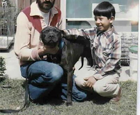 History of Chinaman Pit Bull Bloodline | Good Pit Bulls