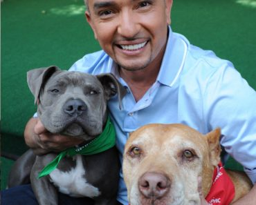 cesar milan and pitbull