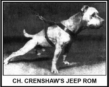 Crenshaw's Jeep ROM