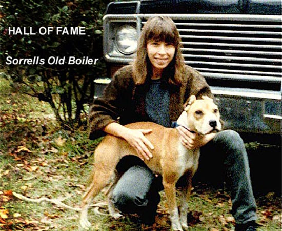 History of Tatonka Pit Bull Bloodline | Good Pit Bulls