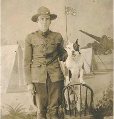 soldier pit bull WW1