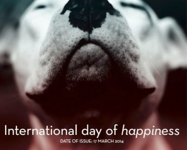 international face of happiness pitbull