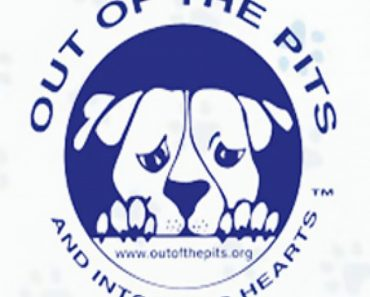 out of the pits rescue
