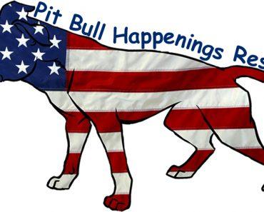 pit bull happenings rescue