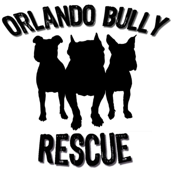 Orlando Bully Rescue Good Pit Bulls