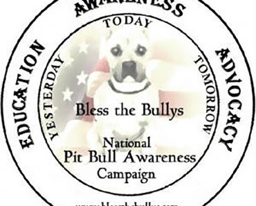 Bless the Bullys Tennessee Pit Bull Rescue