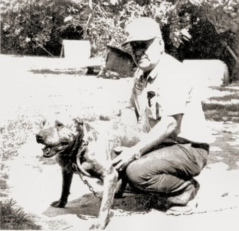 Clyde Mason Pit Bull