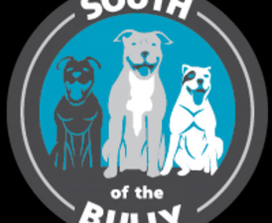 South of the Bully Pit Bull Rescue | Good Pit Bulls