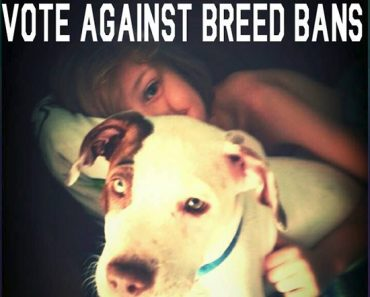 breed ban