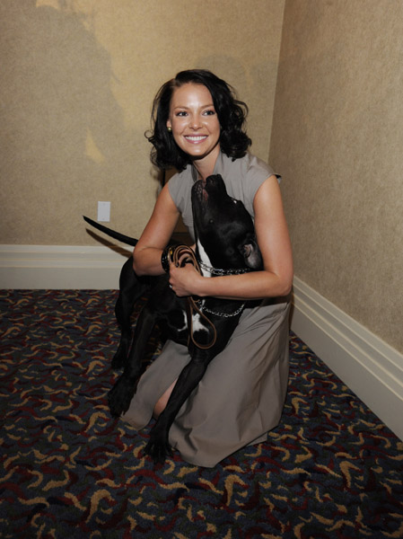 30 Celebrities That Absolutely Adore Pit Bulls – AngusPost