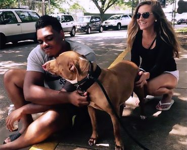 Ronnie Stanley Adopts Pit Bull