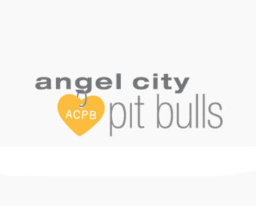 angel city pit bull rescue